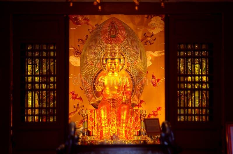 buddha świątyni ząb fotografia royalty free