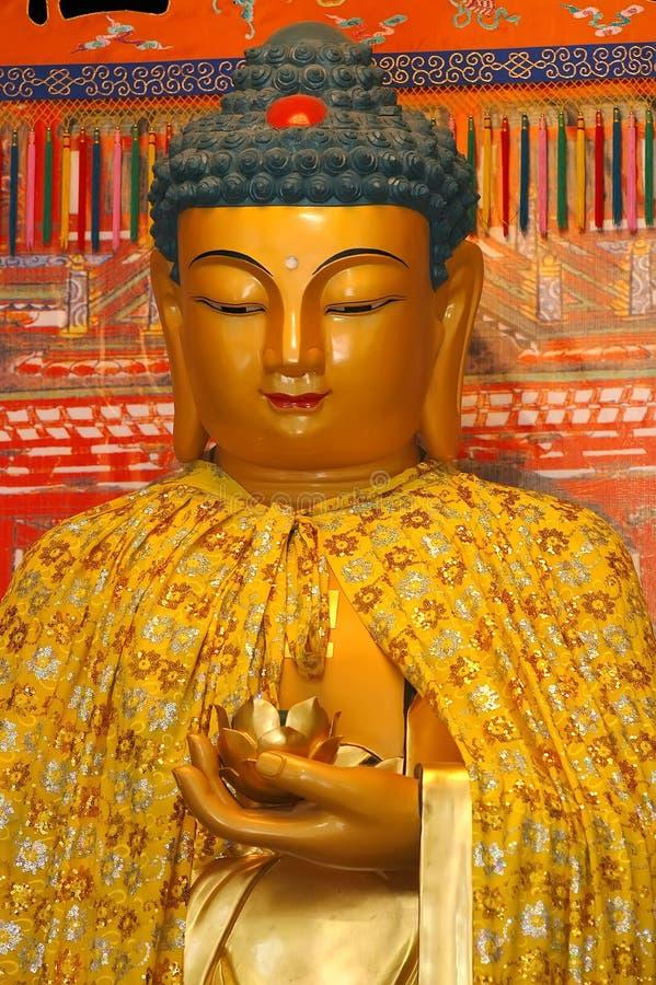 Buddha imagens de stock