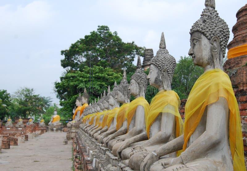 Buddha. The ancient Buddha statue from Ayutthaya royalty free stock image