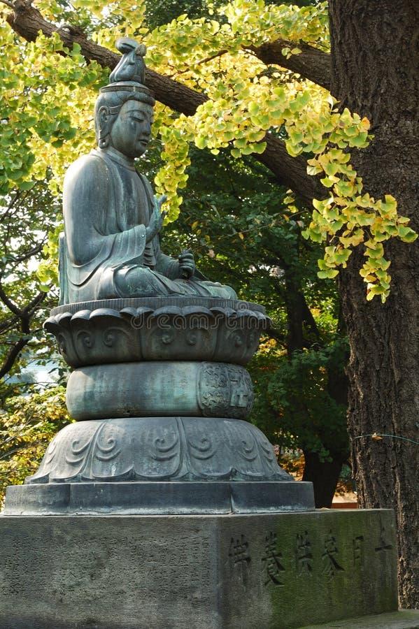 Download Buddha stock photo. Image of buddhism, japan, lotus, mysterious - 4858142