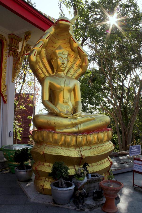 buddha imagem de stock