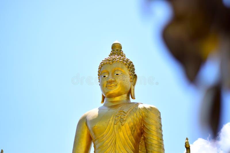 Buddha bonito fotografia de stock