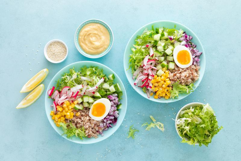 Buddha bowl with boiled egg, rice and vegetable salad of fresh lettuce, radish, cucumber, corn, onion and sesame seeds. And chickpea sauce royalty free stock photos