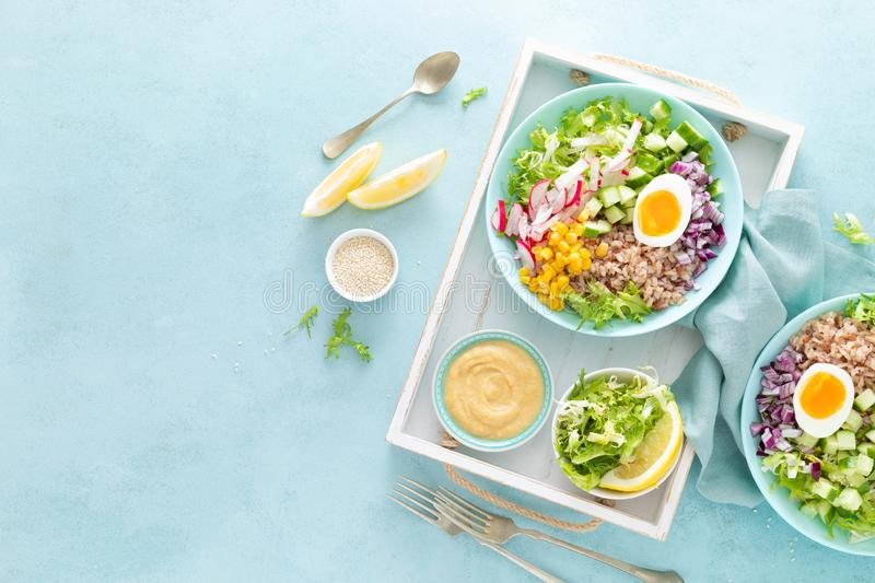 Buddha bowl with boiled egg, rice and vegetable salad of fresh lettuce, radish, cucumber, corn, onion and sesame seeds royalty free stock image