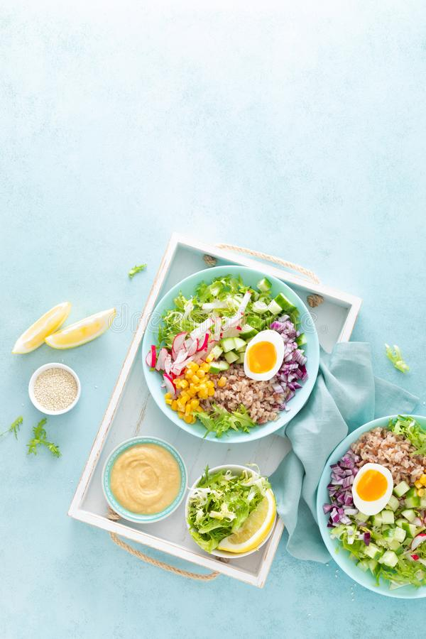 Buddha bowl with boiled egg, rice and vegetable salad of fresh lettuce, radish, cucumber, corn, onion and sesame seeds stock photos
