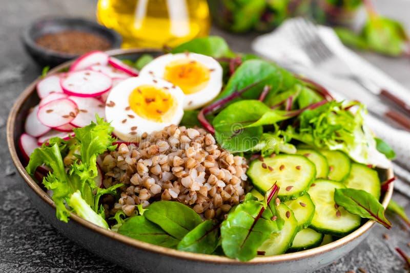 Buddha bowl dish with buckwheat porridge, boiled egg, fresh vegetable salad of radish, cucumber, lettuce and chard leaves. Healthy stock photography