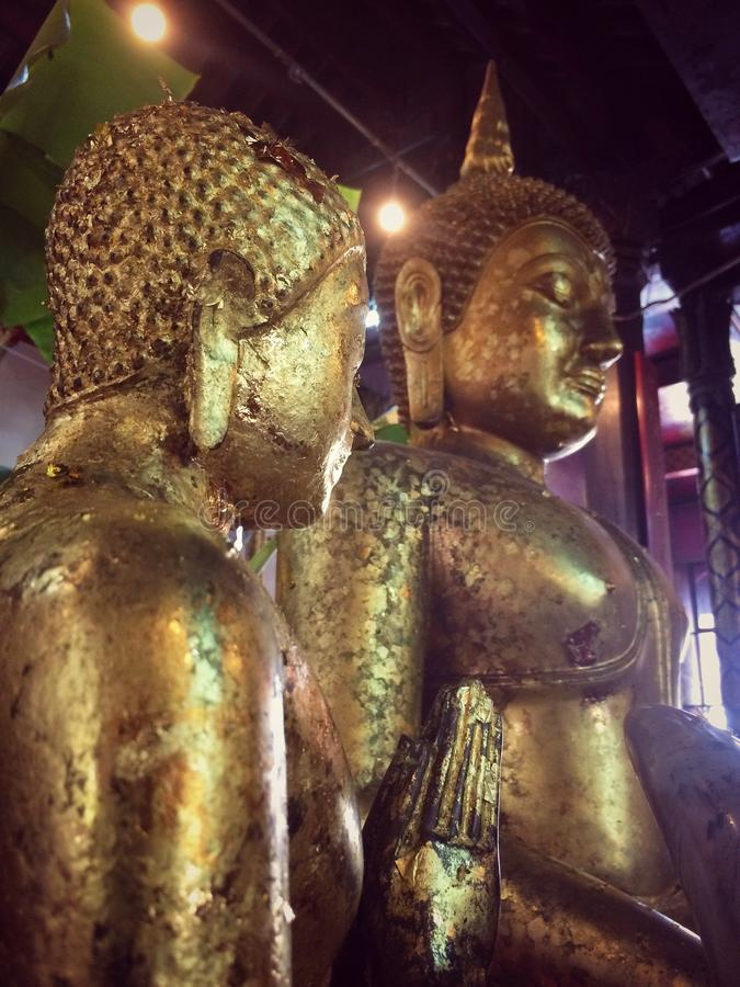 Buddha of Buddhist devotion royalty free stock images