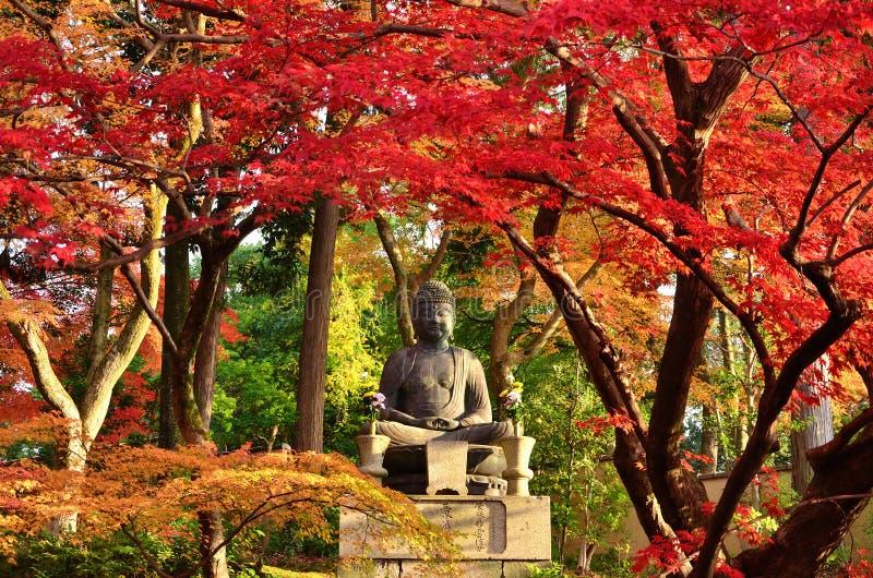 Buddha che medita sotto le foglie di autunno Kyoto Giappone fotografia stock libera da diritti