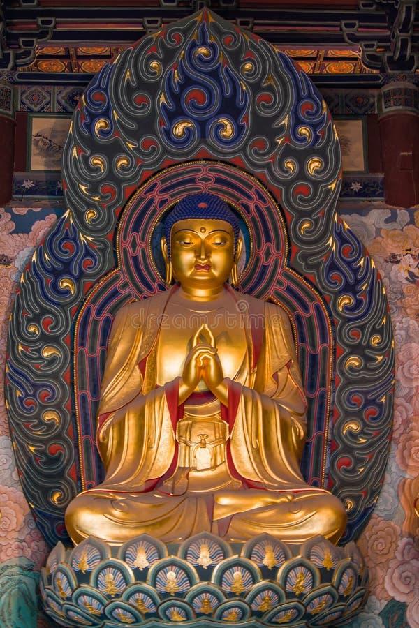 Buddha dourado gigante fotografia de stock royalty free