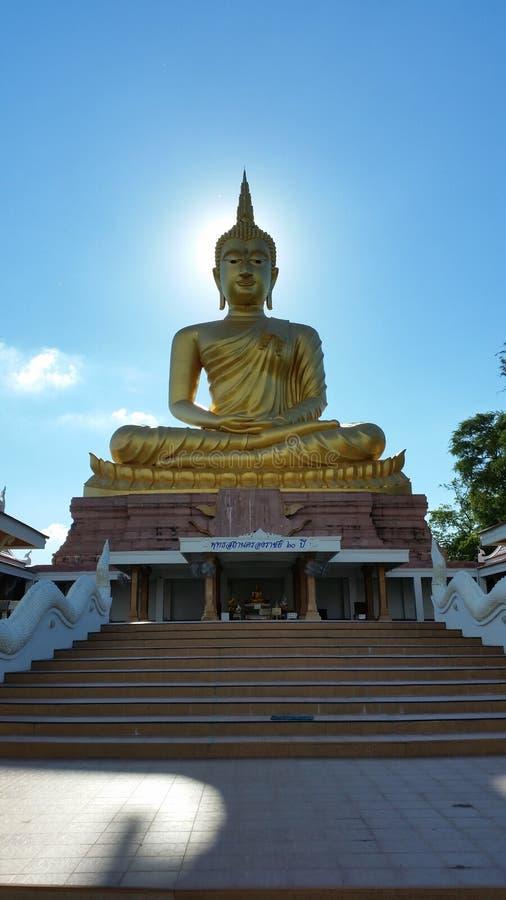 buddha duży wizerunek obrazy royalty free