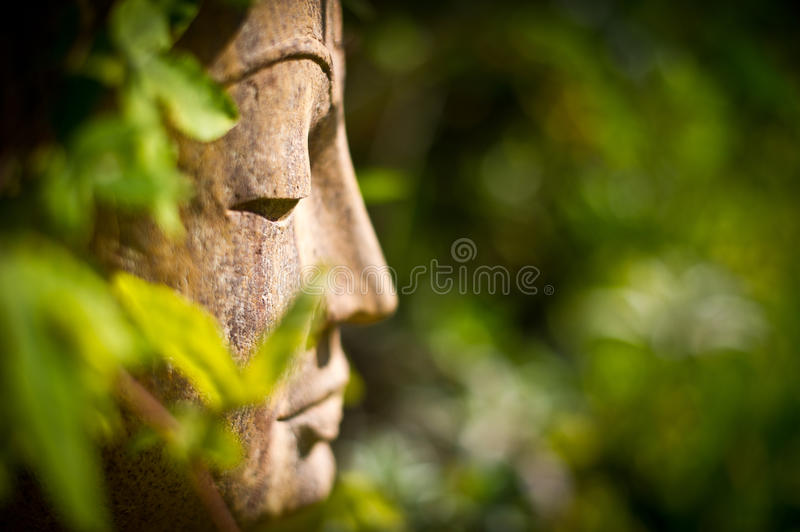 Buddha face in a garden royalty free stock photography