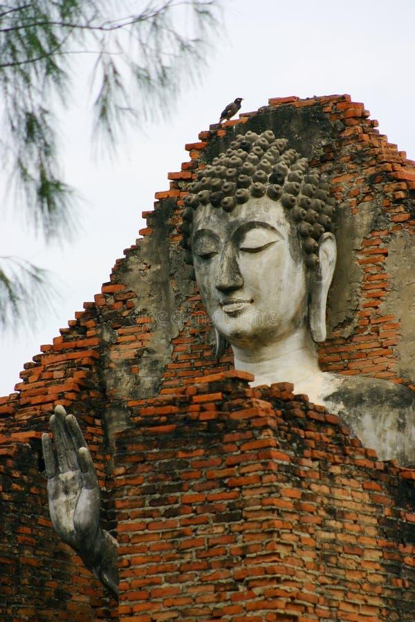 Buddha Face, Thailand royalty free stock photography