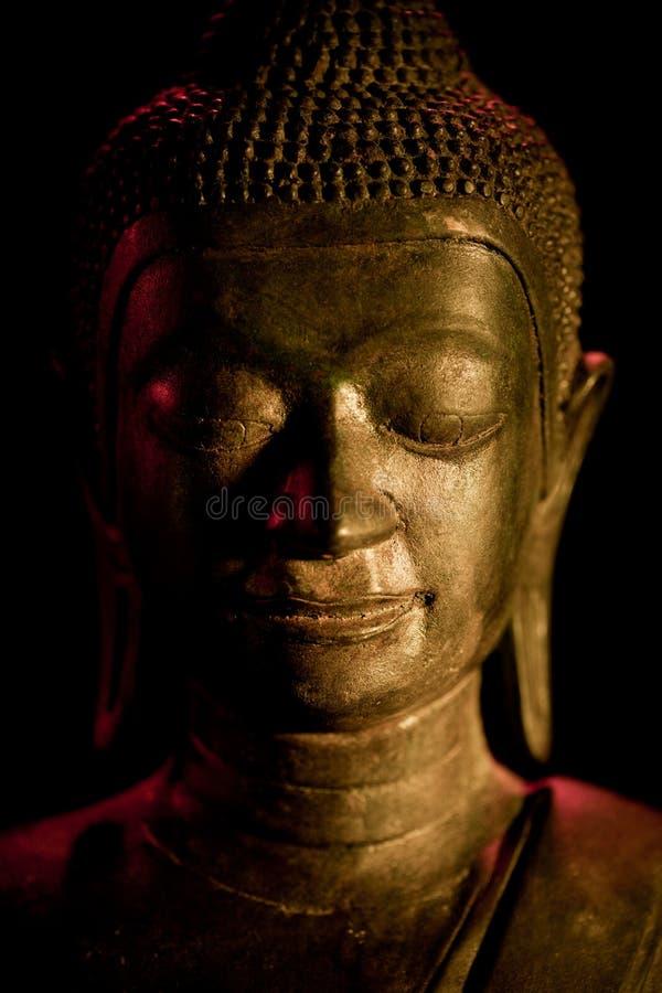 buddha framsida royaltyfria bilder