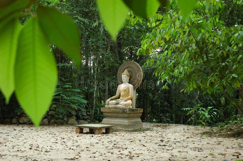 buddha gammal staty royaltyfri fotografi