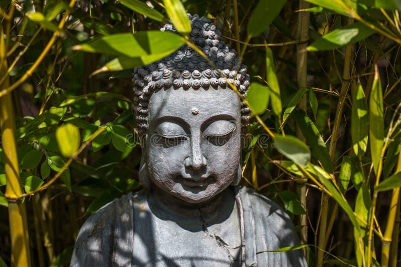 Buddha i djungel royaltyfri bild