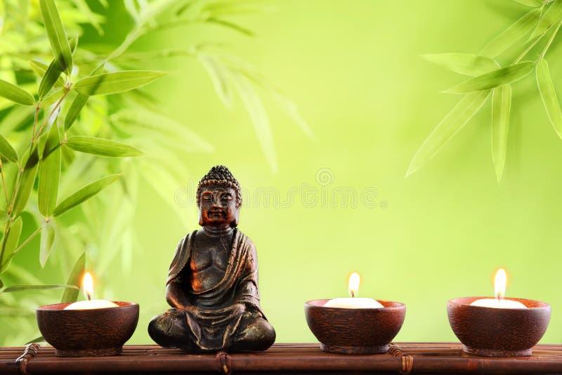 Buddha i meditation royaltyfria bilder