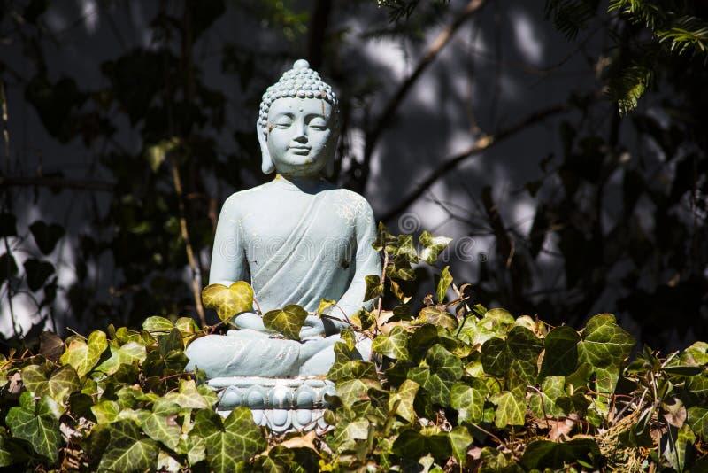 Buddha II obrazy royalty free
