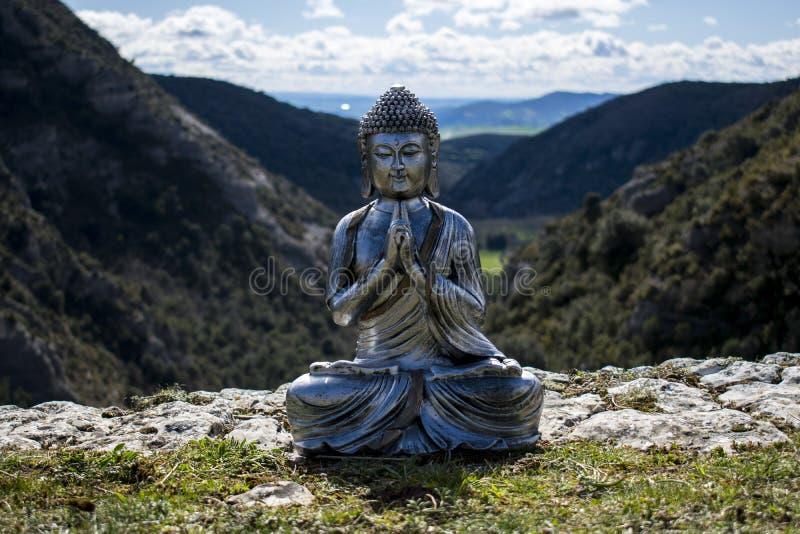 Buddha im Busch lizenzfreie stockfotografie