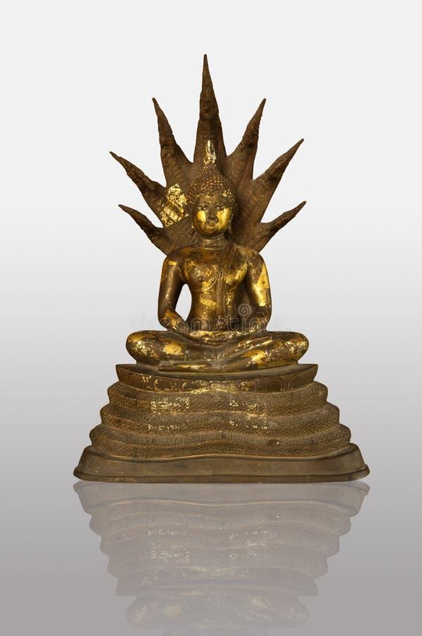 Free Buddha Image Stock Photo - 16157690
