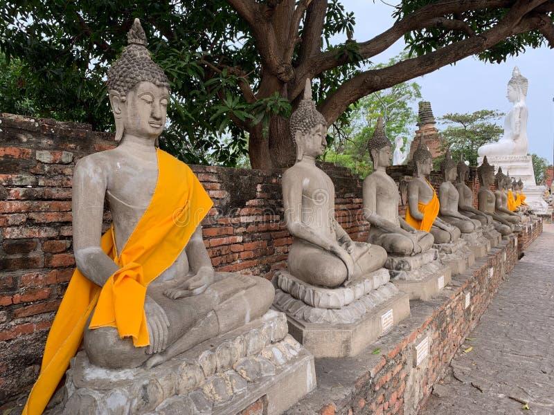 The Buddha image background stock images