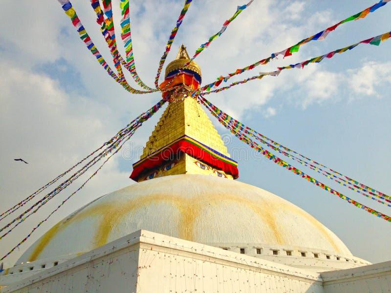 buddha kathmandu stupa royaltyfri bild
