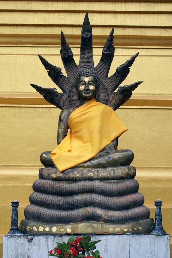 buddha ormar royaltyfria foton