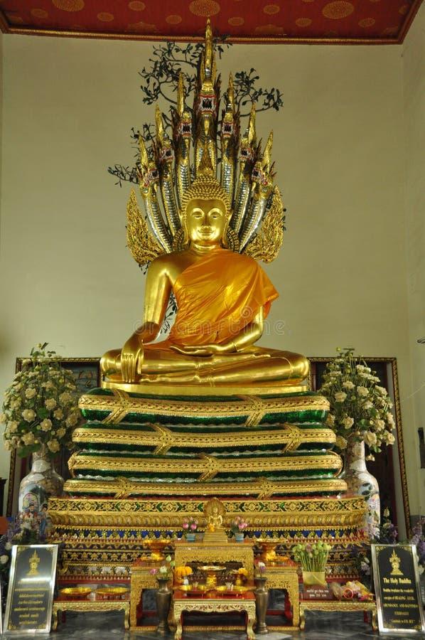 Buddha postury Nagas overspread obraz royalty free