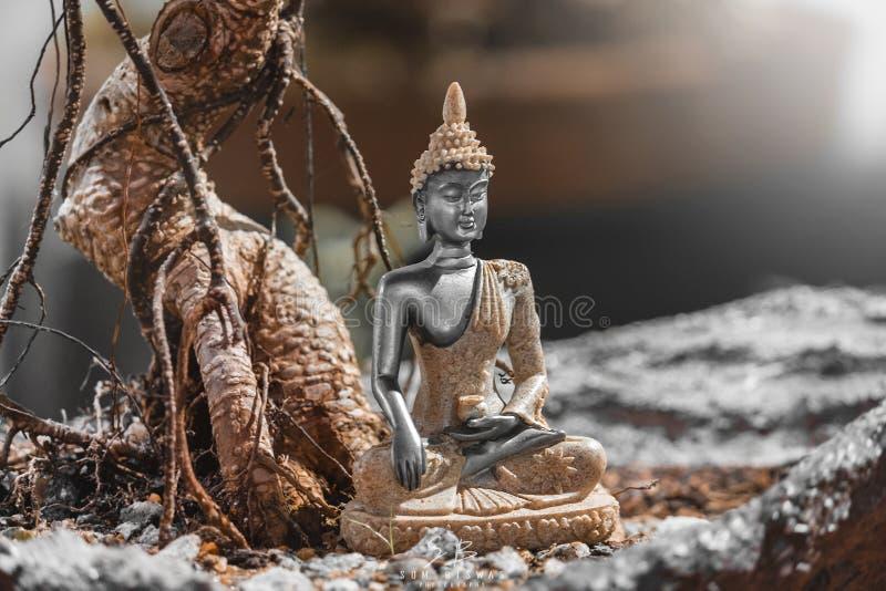 Buddha : A prince, warrior, meditator, and finally enlightened teacher. stock photo