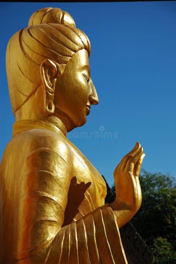 buddha profil arkivbilder