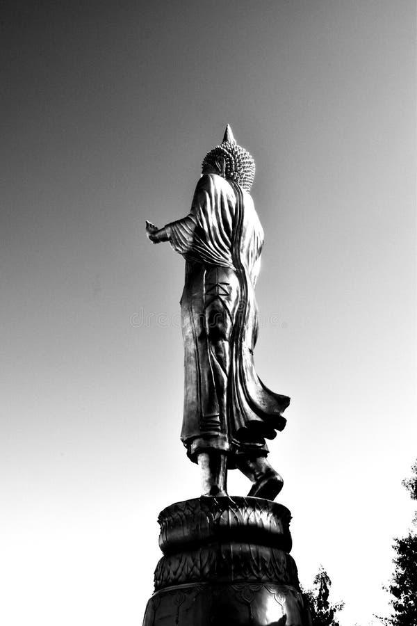 buddha silhouette royaltyfria bilder