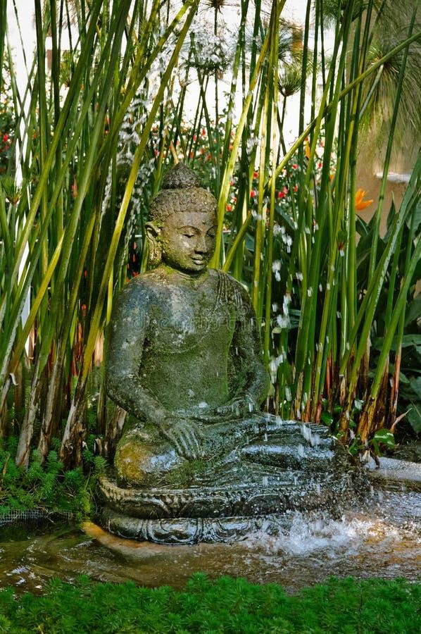 buddha springbrunn royaltyfria foton