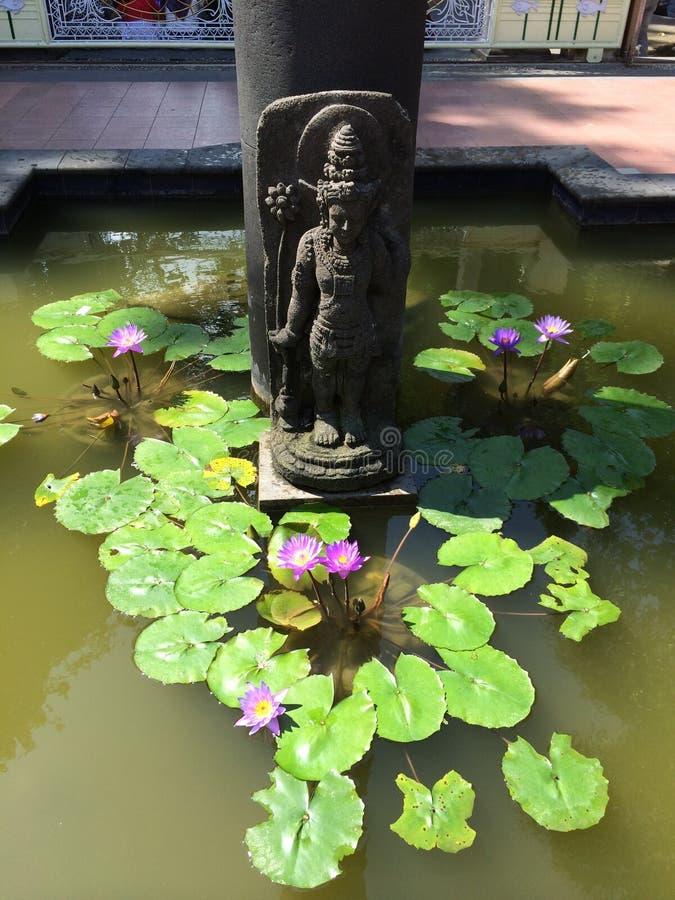 Buddha statua i Lotosowy staw w Borobudur fotografia stock