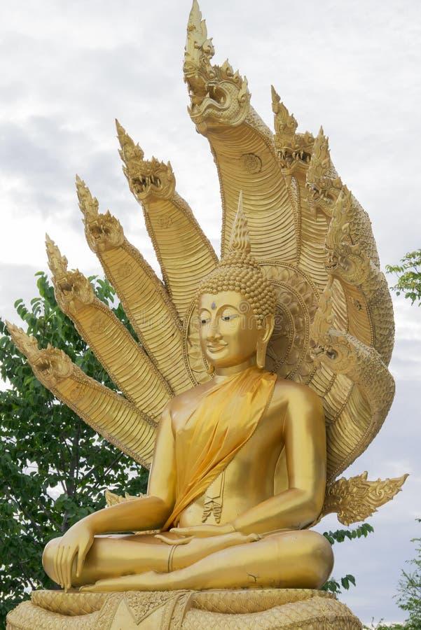 Buddha statua z dziewięć głowiastym wężem obrazy stock
