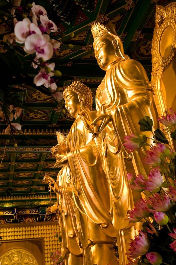Free Buddha Statue Stock Photo - 7694920