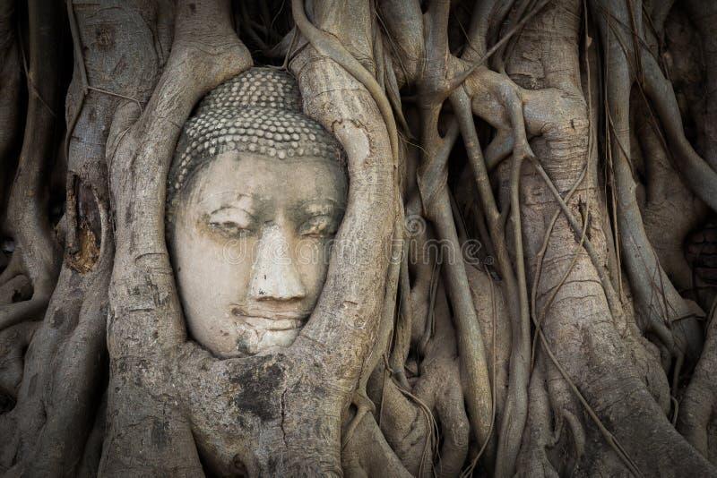 Buddha statue and ancient ruin. stock photo