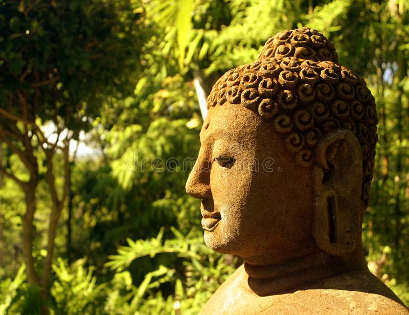Buddha Statue in Forest