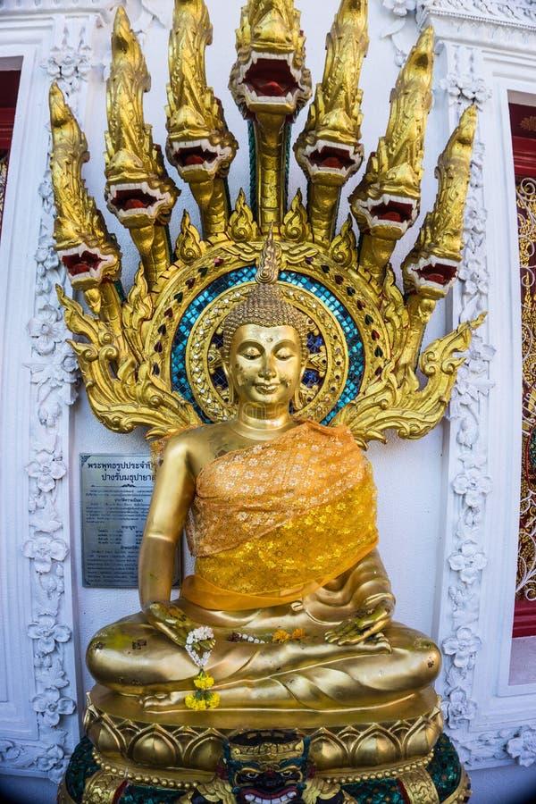 Buddha Statue with Naga nine heads cover stock image