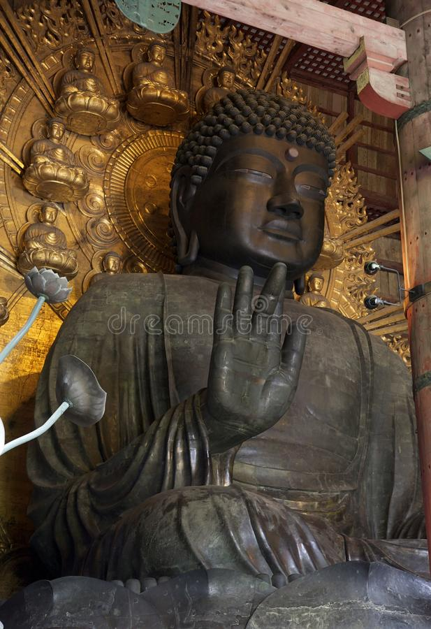 Buddha statue in Todai-ji Temple, Nara royalty free stock photo