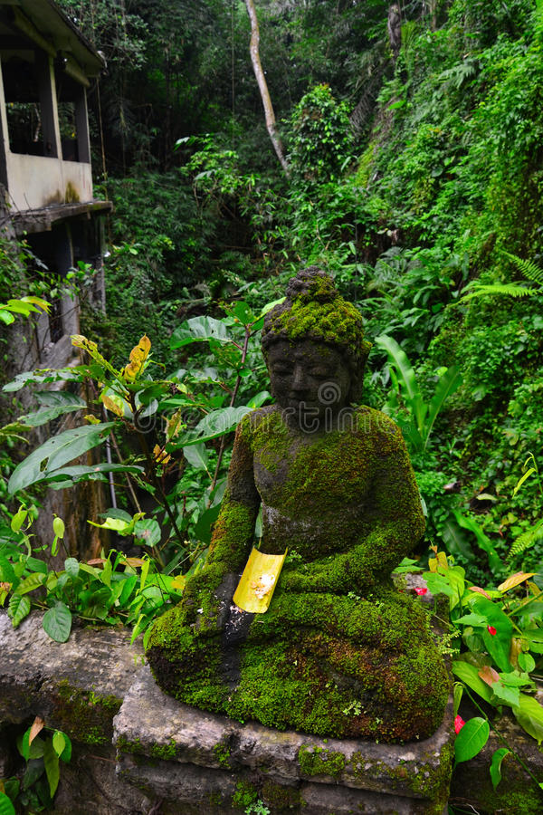 The Buddha statue stock images
