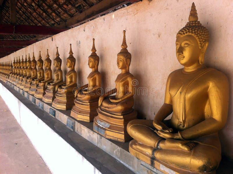 Buddha-Statue werden in einer langen Reihe vereinbart stockbild