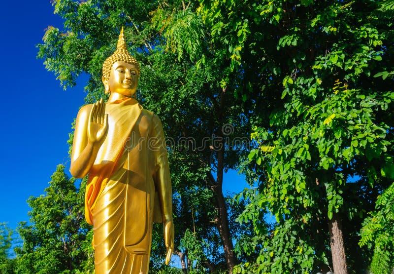 Buddha-Statuen bei Wat Doi Kham stockbild
