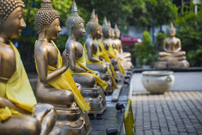 Buddha-Statuen in Seema Malaka Temple, Colombo, Sri Lanka lizenzfreie stockfotografie