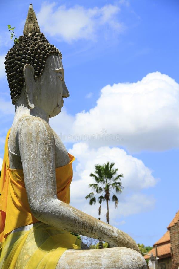 Download Buddha statues stock image. Image of kaeo, ayutthaya - 25889447