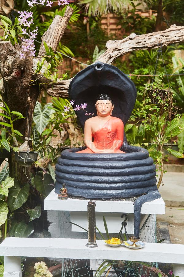 Buddha statuette in tropical garden. Sri-Lanka. Close-up royalty free stock photo