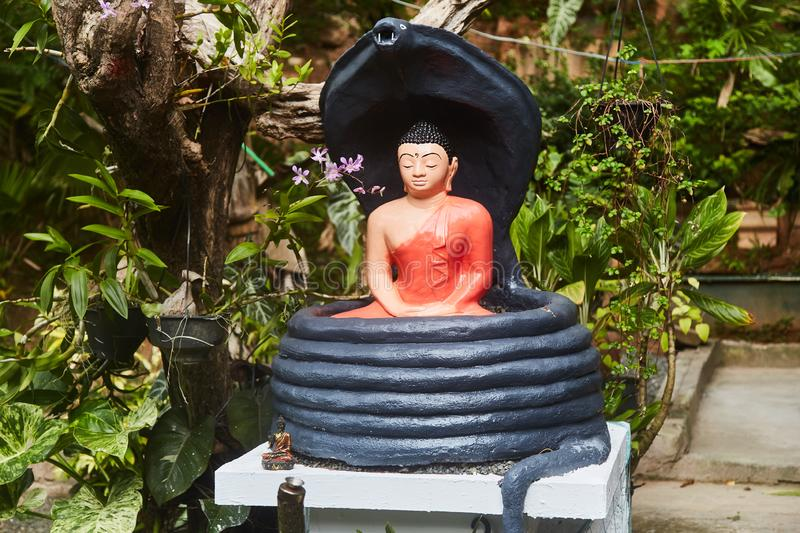 Buddha statuette in tropical garden. Sri-Lanka. Close-up royalty free stock photos