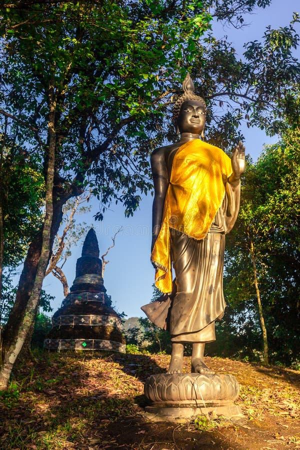Buddha statuy stoi w lesie zdjęcie royalty free