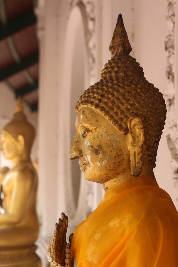 Buddha in Thailand stock photos