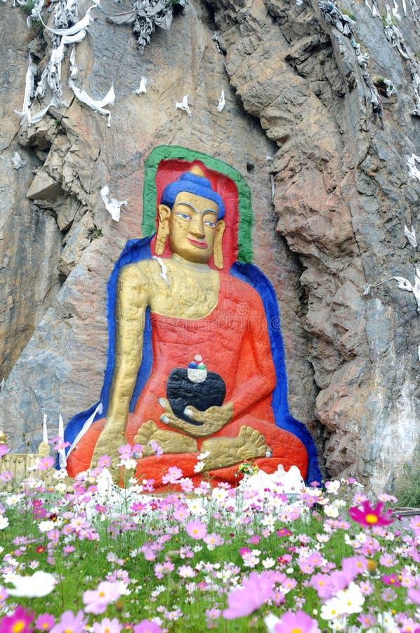 buddha tibet arkivfoto
