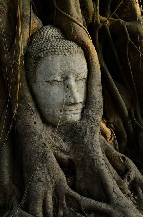 Buddha Twarz zdjęcie royalty free