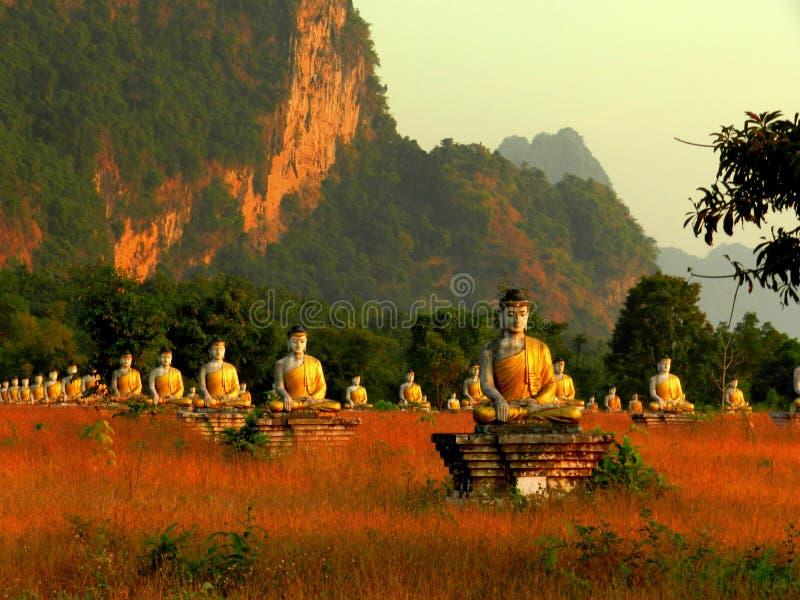 buddha tysiące obrazy royalty free